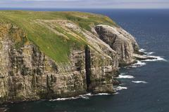 bird rock at cape st. mary´s ecological seabird reserve, avalon peninsula - stock photo