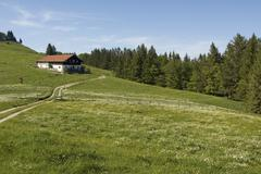 Stock Photo of moier alm between grassau and rottau in the chiemgau on the way to the grosss