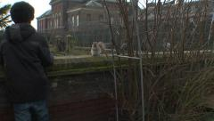 937. London. Child looking at a squirrel and a pigeon Stock Footage