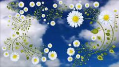 Chamomile  Animation on a background of clouds Stock Footage