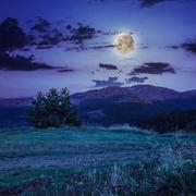 moonlight beams in highland - stock photo