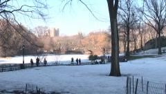 960. New York. People walking in the snowy park Stock Footage