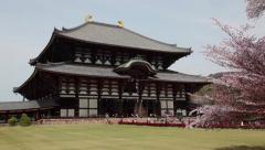 Great Buddha, Todai-ji temple, Nara-koen park, Nara, Japan, Asia 1of2 Stock Footage
