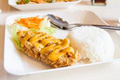 fried chicken with rice - stock photo