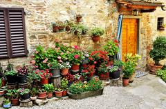 alley with flowers in italy - stock photo