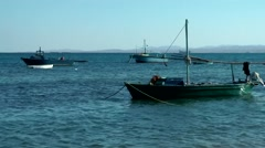Egypt Red Sea City of Safaga 016 fishing boats at anchor Stock Footage