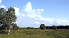 Day in a nature reserve (High Fens – Eifel Nature Park, Belgium). Time lapse. Stock Footage