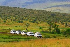 safari game drive in maasai mara national reserve, kenya - stock photo