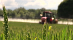 Wheat plants and tractor spray fertilize field with chemicals Stock Footage