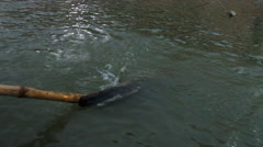 An oar paddling on the Ganges River - stock footage