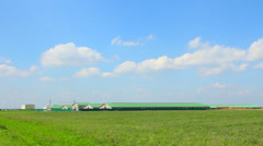 Farm among green natural field and grass Stock Footage
