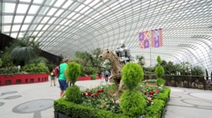 People visit the Flower Dome Stock Footage