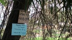 Western Asia Red Sea Jordan Aqaba 013 arabic writings at a tree-trunk Stock Footage