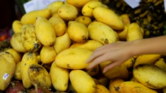 Choosing ripe mangos Stock Footage