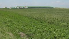 Horizon grassland and grass on wide green field with farm Stock Footage