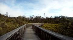Stock Video Footage of Walking over a bridge at Kilauea volcano‎ in Hawaii two of two.