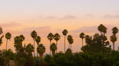 Clouds moving sunset palm trees silhouettes Los Angeles California 4K Timelapse. Stock Footage
