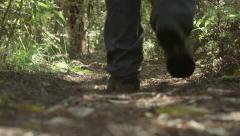 Close up of a hiker's feet walking in the forest, away from the camera. Stock Footage