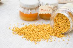 Propolis grains Stock Photos