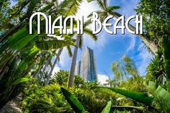 miami beach - stock illustration