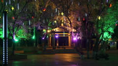 Heihe City Heilongjiang Park Night View 02 Stock Footage