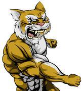 punching wildcat mascot - stock illustration