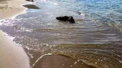 Waves hitting rocks - Seaside Stock Footage