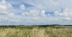 landscap texel - stock photo