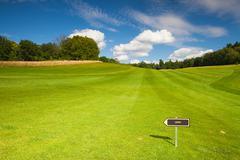 Empty golf fairway in sunny day Stock Photos