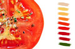Seasoned tomato slice color palette Stock Illustration
