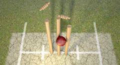 Cricket ball hitting wickets Stock Illustration