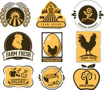 Farm and Organic Food icons - stock illustration