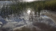 Stock Video Footage of Summer lake and reflected reeds