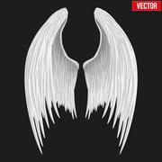 White folded angel wings. Vector. Stock Illustration