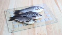 Three fishes. - stock footage