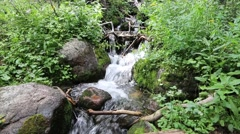 Mountain Stream Tumbling Through Rocks and Plants Stock Footage