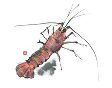 Lobster - stock illustration