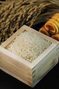 Stock Photo of Rice