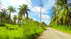 Bike ride in tropical countryside. Speed up. Stock Footage