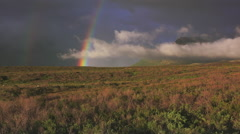 Rainbow over Evening Stormy Tundra HD Stock Footage