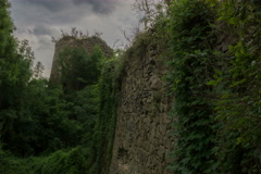 Overgrown fortress 6K Stock Footage
