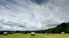 Timelapse of Summer field and clouds in north Poland Stock Footage