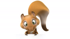 3D funny squirrel with a white board Stock Footage