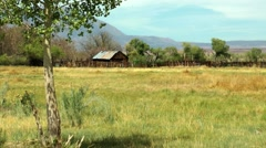 Wooden hut on meadow in california Stock Footage