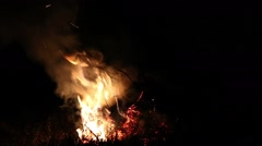 Fading fire of dry branches Stock Footage