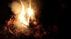 Fading fire of dry branches - stock footage
