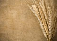 Ears spike of wheat on wood Stock Photos