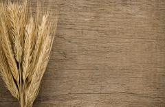 ears spike of wheat on wood texture - stock photo