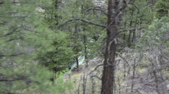 Colorado forest Rocky Mountains from moving vintage steam train 4K 168 Stock Footage