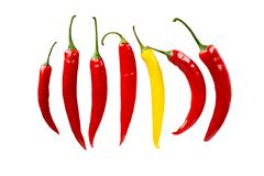 Top view individuality in line composition chilli peppers isolated on white b Stock Photos